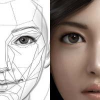 Proportions May Be The Key To A Beautiful Face